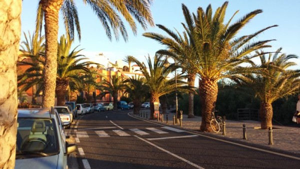 14-4 sunset boulevard