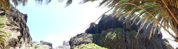 17-4 marca palm panorama