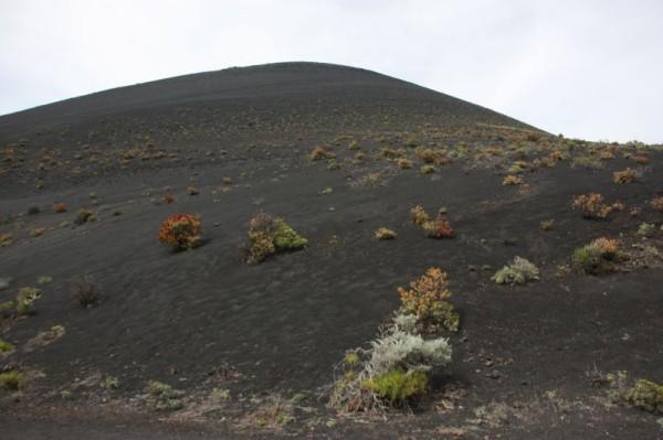 Vulkaanlandschap