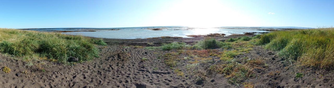 21-8 strand panorama