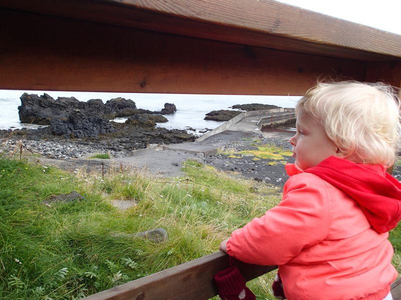 Anika kijkt tussen het hekje door uit op de kliffen